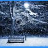関東に大雪警報。2016年も暖冬が長く・・・。桜開花にも影響?