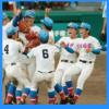 高校野球決勝の視聴率(花咲徳栄vs広陵2017)。理由・原因は中村?過去との比較